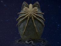 Aliens: Neoplasma ранняя информация