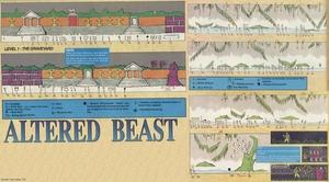 Карта Altered Beast
