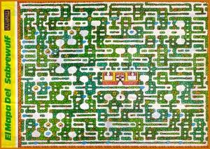 Карта Sabre Wulf